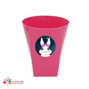 لیوان تم تولد خرگوش