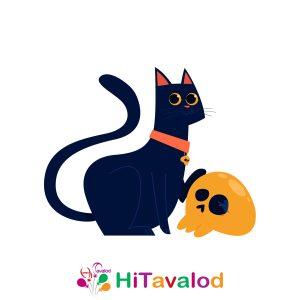 استند تم گربه